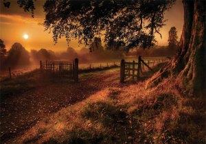 sunrise_photography_3